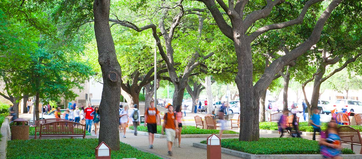 Students walk in the tree-lined shade of the mall in front of Gregory Gym.